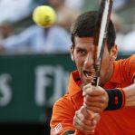 champion1 Djokovic Novak